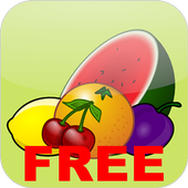 Fruit Slot Casino icon