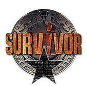 Super Dungeon Survivor icon