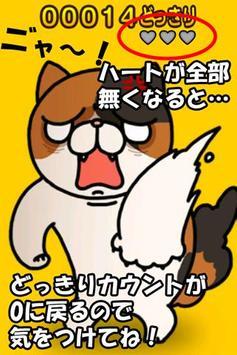 Surprised cat screenshot 9