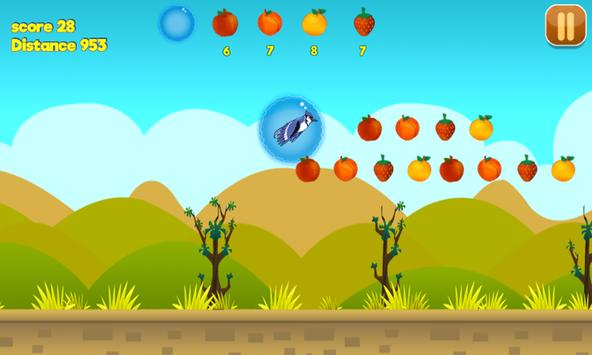 Hungry bird-Adventure screenshot 3
