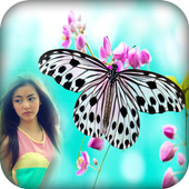 Butterfly Photo Frame icon
