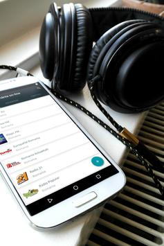 Radio Romania Online apk screenshot