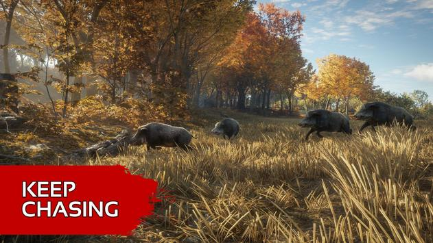 Animal Hunter Bow Simulator screenshot 11