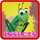 Insect & Bug Kids Puzzle icon