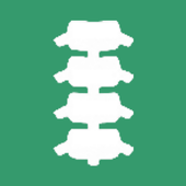 INSELhealth - spinal surgery icon