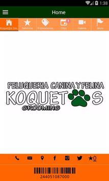 Koquetos Grooming poster