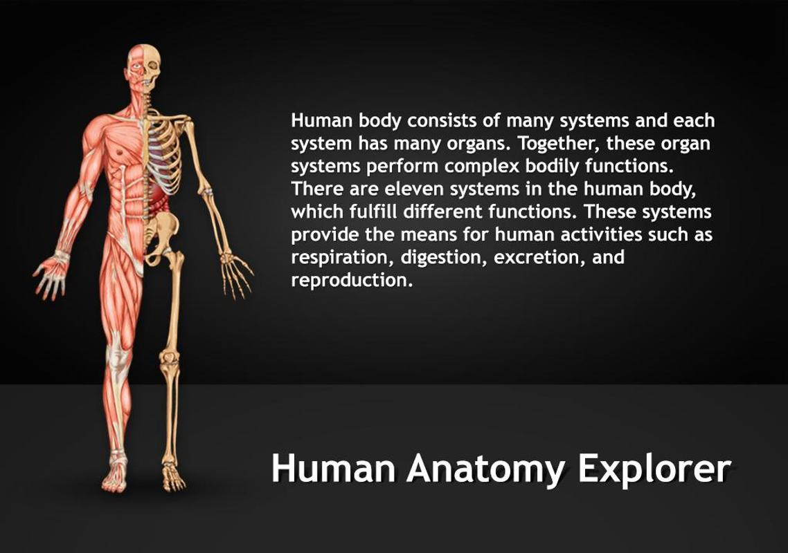 Human Anatomy Explorer Apk Download Free Education App For Android