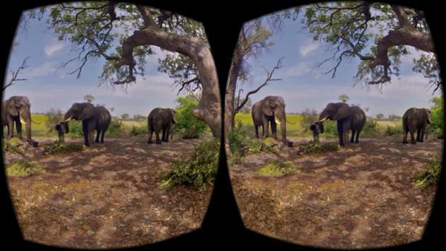 Wild Life Animals VR 360 apk screenshot