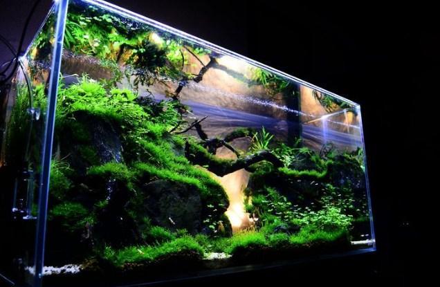 Interior Aquarium For Android Apk Download