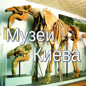 Музеи Киева icon