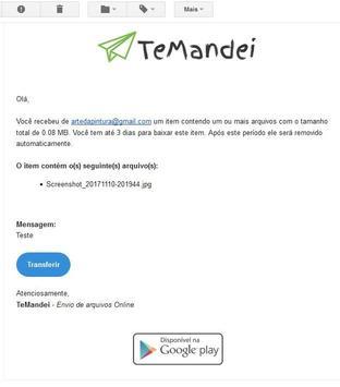 TeMandei - Envio de arquivos GRANDES Online screenshot 5
