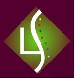 Satara Smart Services icon