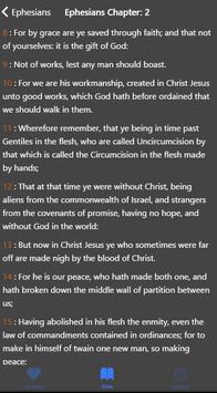 Offline Bible apk screenshot