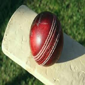 Cricket Premier League India icon