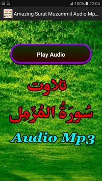 Amazing Surat Muzammil Audio screenshot 2