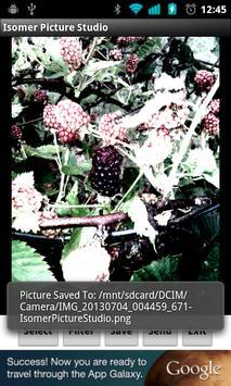 Isomer Picture Studio apk screenshot