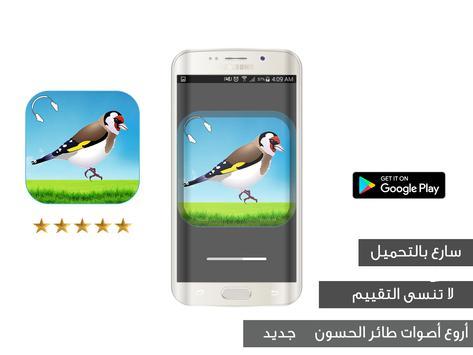 تغريد طائر الحسون - المقنين poster