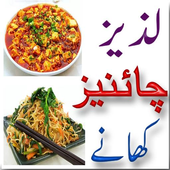 Chinese Dishes in Urdu icon