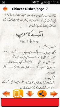 Chinese Dishes in Urdu screenshot 4