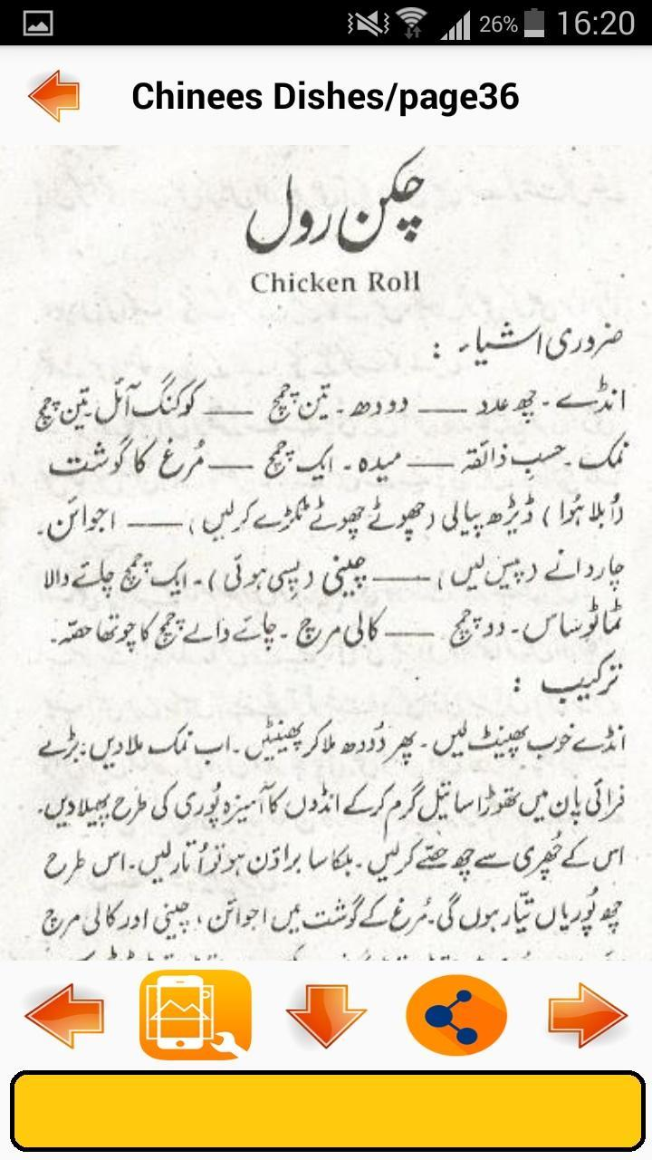 Chinese Dishes in Urdu poster