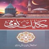 Hikayat-e-Rumi icon