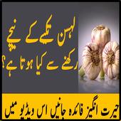 Neend Anay Ka Garlic Totka 2017 icon