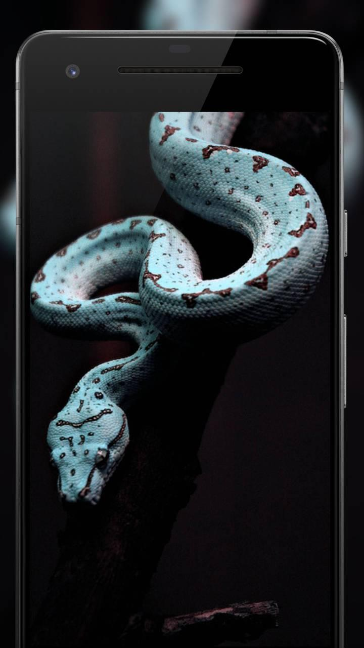 Black Wallpaper Amoled Dark Background Darkify 3 For Android Apk Download