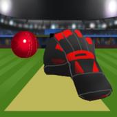 TapCatch Cricket 2 icon