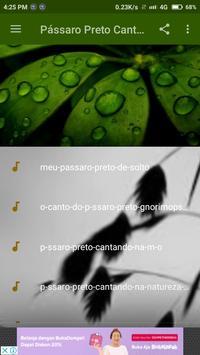Pássaro Preto Canto Mateiro screenshot 1