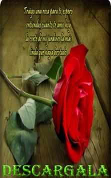 Rosas Fondo de Pantalla ▬ Rosas Gif. screenshot 1