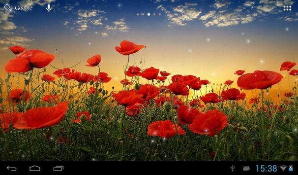 Sunset over a field of poppies apk screenshot