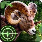 Wild Hunter icon