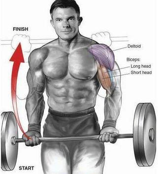 Gym Workout exercises apk screenshot
