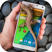 Lizard in phone funny joke icon