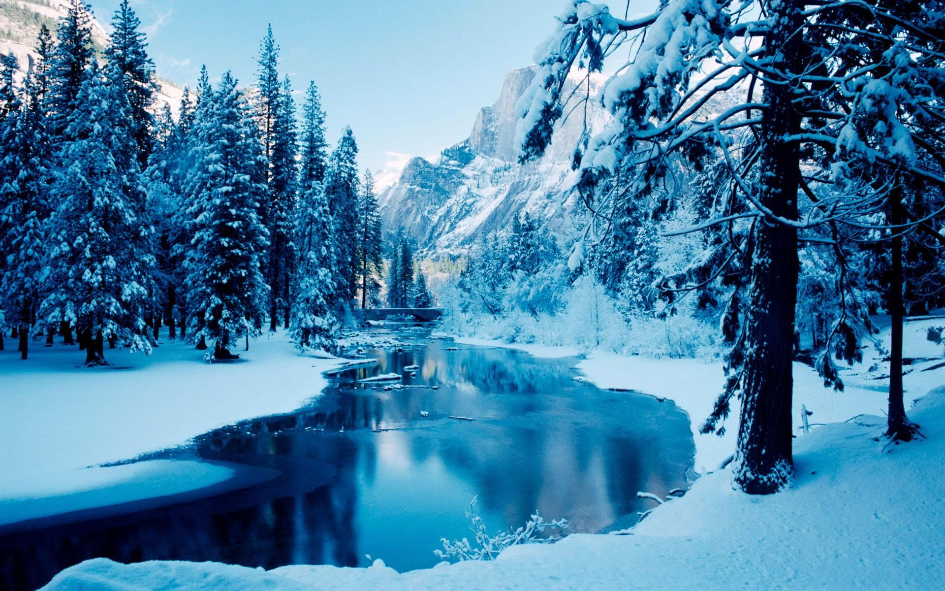 4k Winter Hd Wallpapers For Android Apk Download