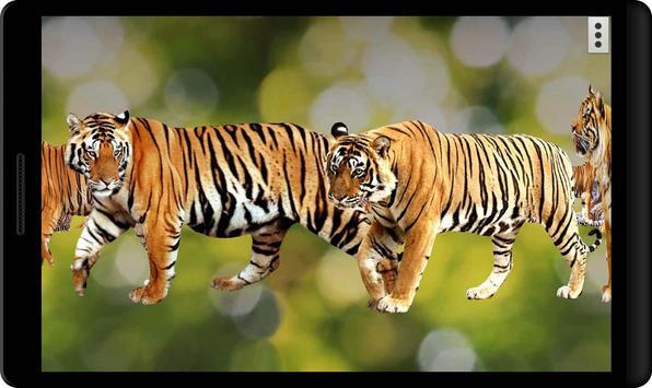 4D Tiger screenshot 3