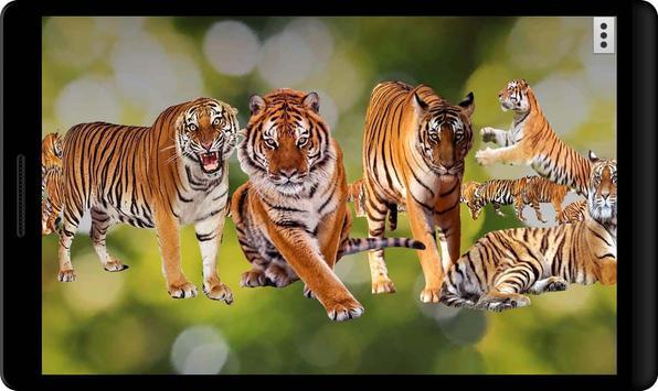4D Tiger Live Wallpaper poster