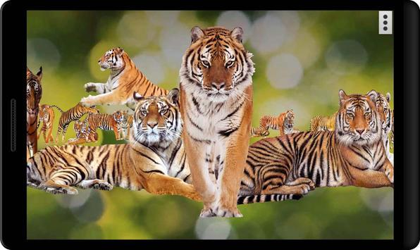 4D Tiger screenshot 2