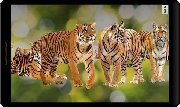 4D Tiger screenshot 7