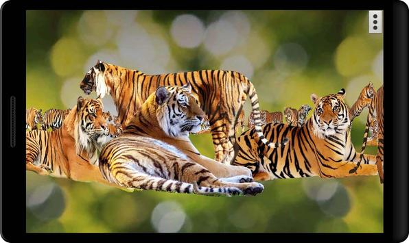4D Tiger screenshot 4