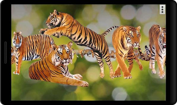 4D Tiger screenshot 5