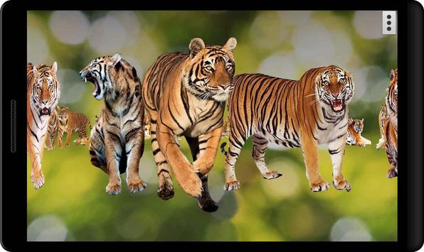 4D Tiger screenshot 6
