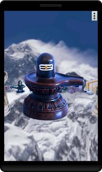4D Shiva Lingam poster