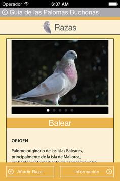 Guide Pouter Pigeons screenshot 2