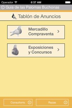Guide Pouter Pigeons screenshot 5