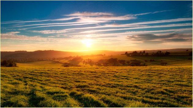 Nature HD Screen Walls apk screenshot