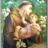 Glorioso San Antonio de Padua icon