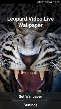 Leopard Video Live Wallpaper apk screenshot