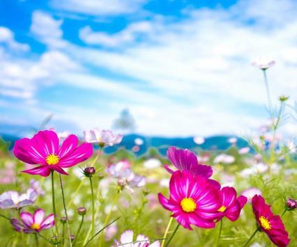 Flower Jigsaw screenshot 2