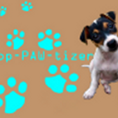 App Paw Tizer icon